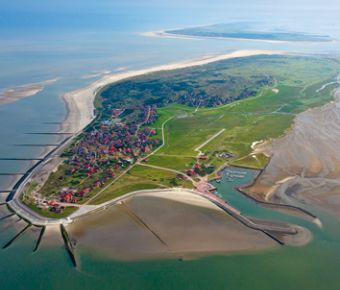 354x374_Baltrum_©_Guenther_Luebbers.jpg